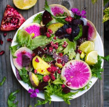 Nutrition alimentation équilibrée